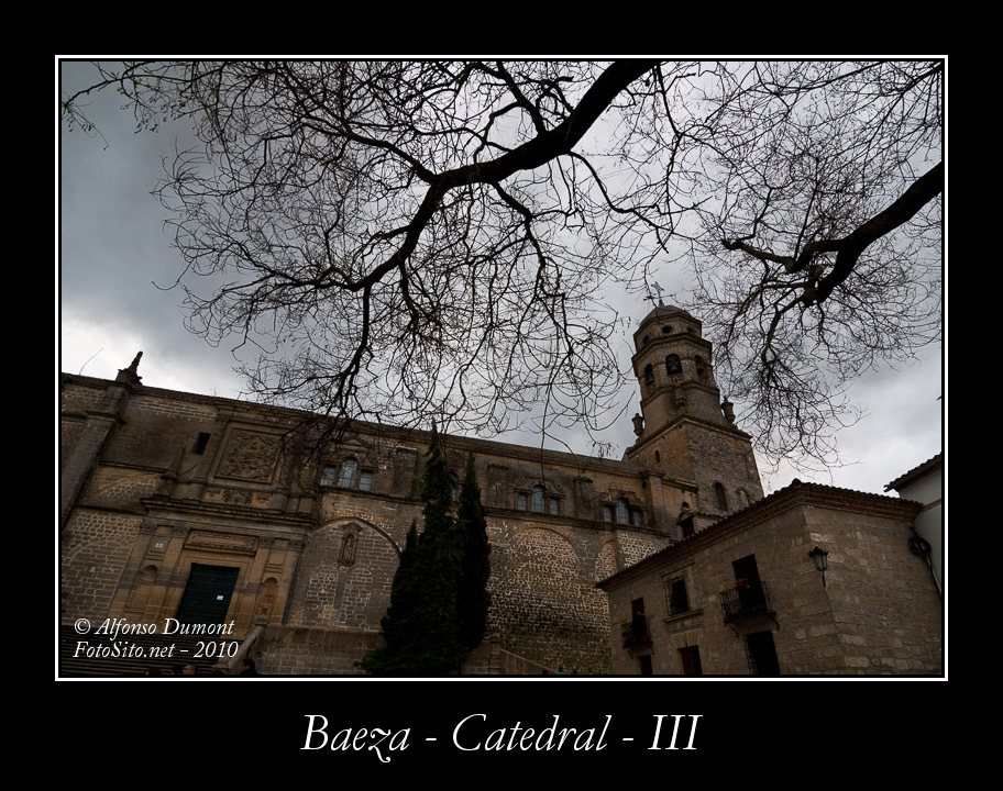 Baeza – Catedral – III