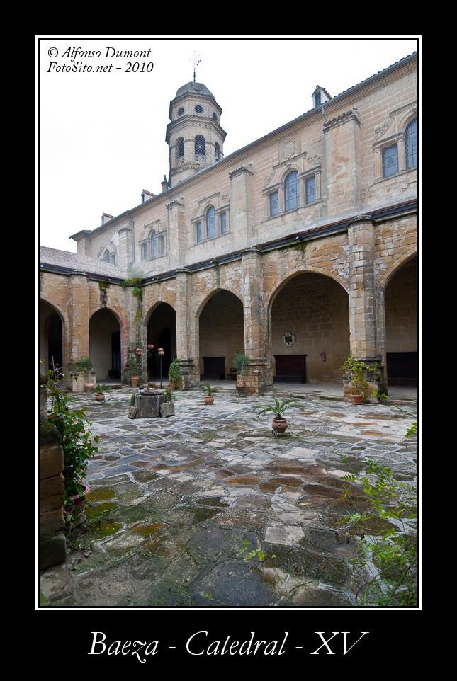 Baeza – Catedral – XV