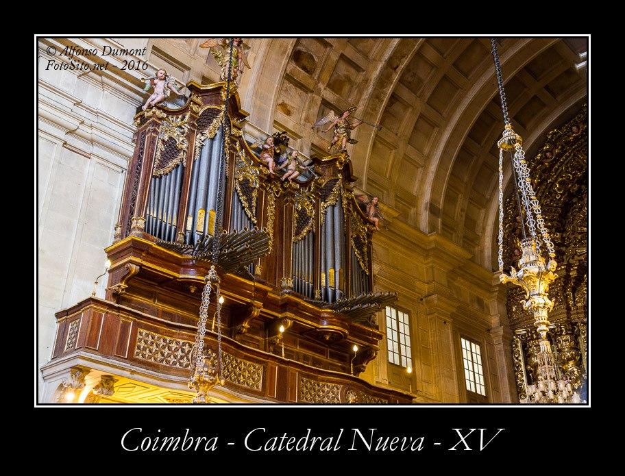 Coimbra – Catedral Nueva – XV