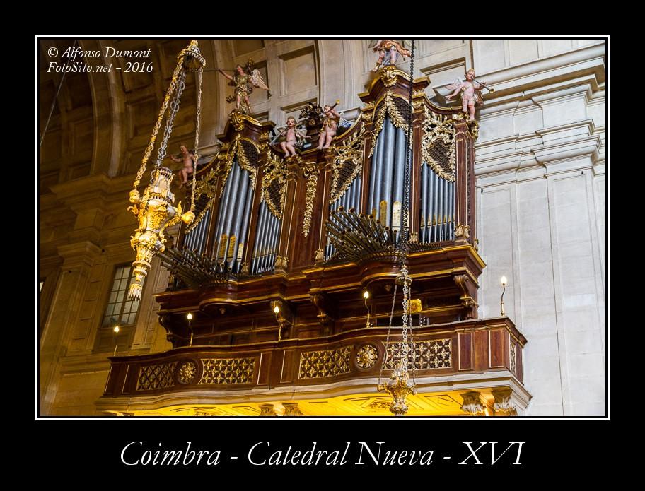 Coimbra – Catedral Nueva – XVI