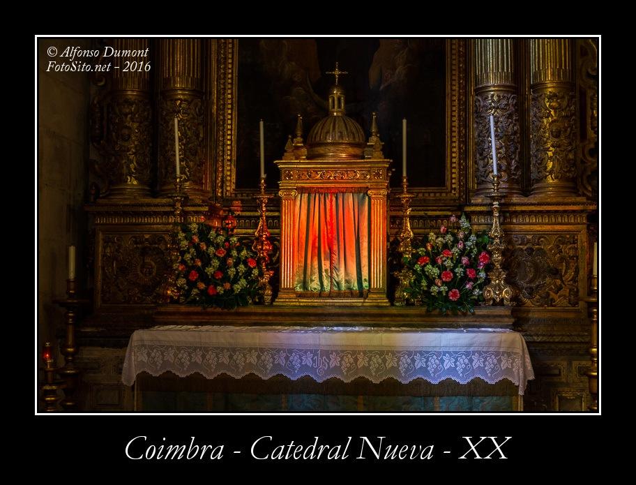 Coimbra – Catedral Nueva – XX