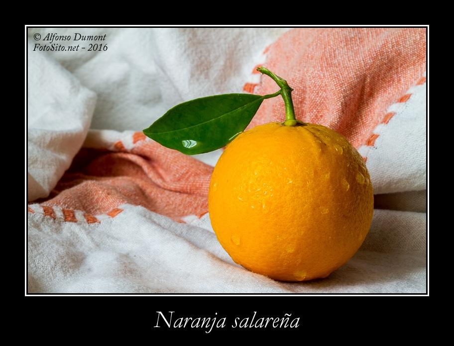 Naranja salarena