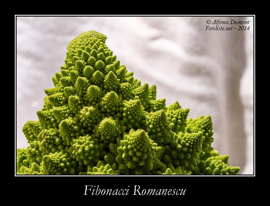 Fibonacci Romanescu