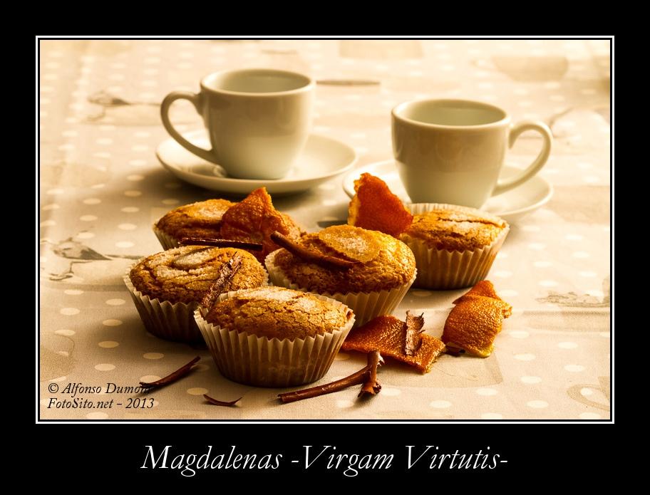 Magdalenas -Virgam Virtutis-