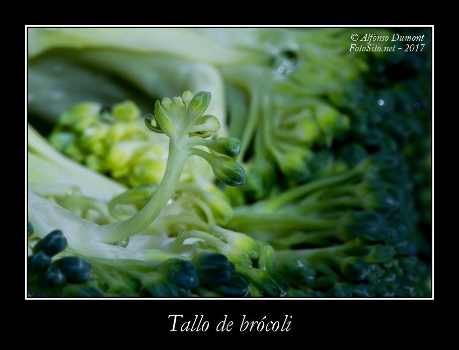 Tallo de brocoli