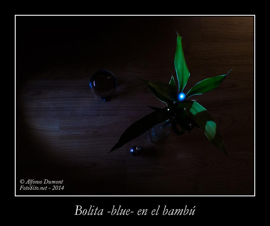Bolita -blue- en el bambu