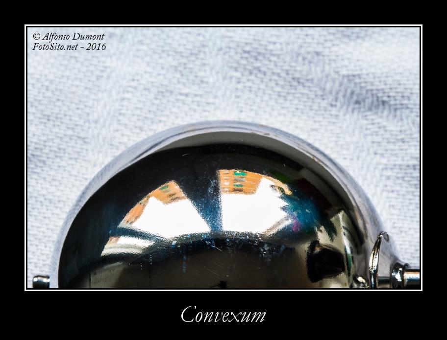 Convexum