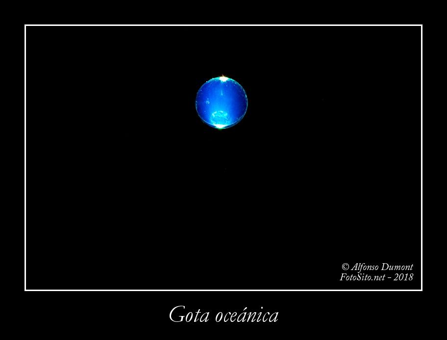 Gota oceanica