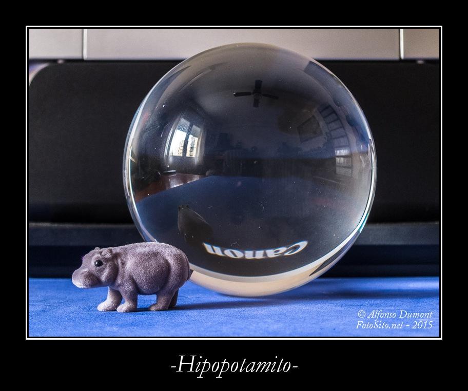 -Hipopotamito-