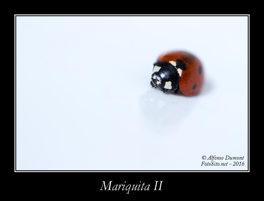 Mariquita II