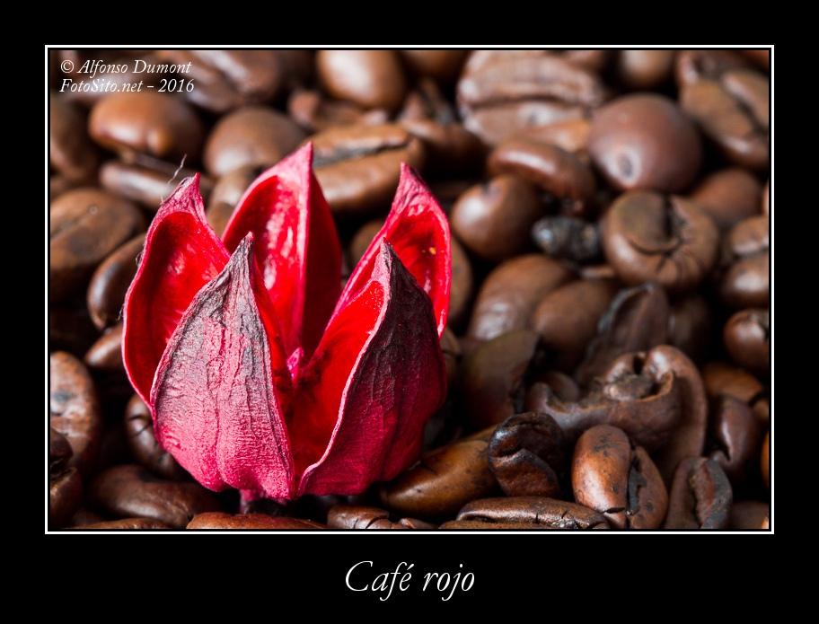 Cafe rojo 1