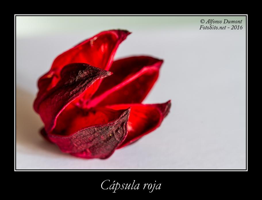 Capsula roja