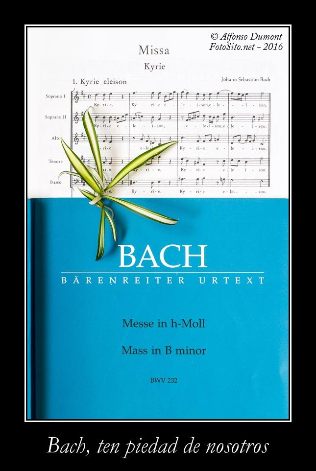 Bach ten piedad de nosotros