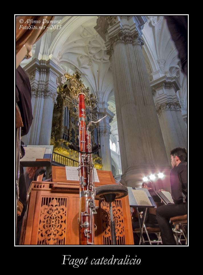 Fagot catedralicio