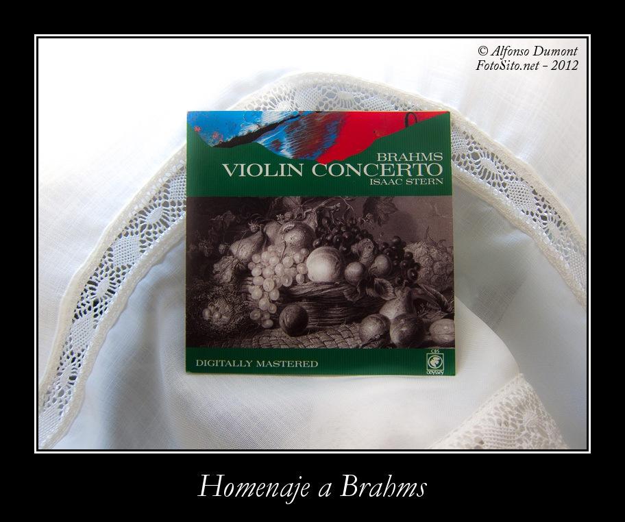 Homenaje a Brahms