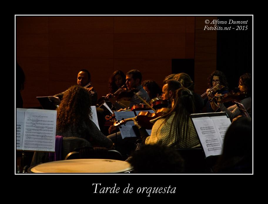 Tarde de orquesta