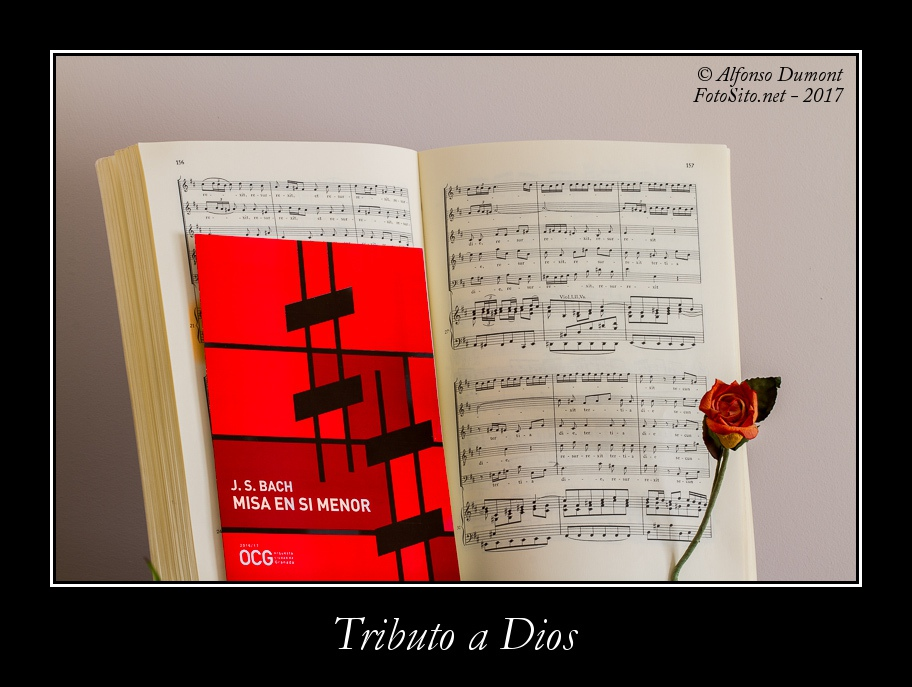 Tributo a Dios