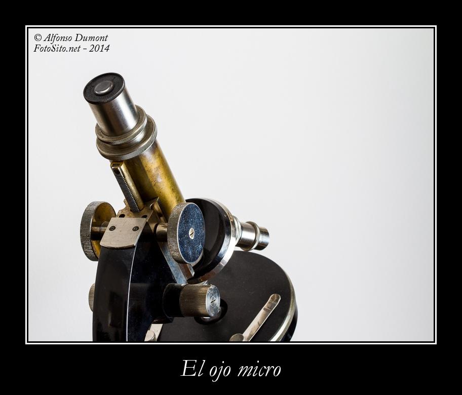 El ojo micro