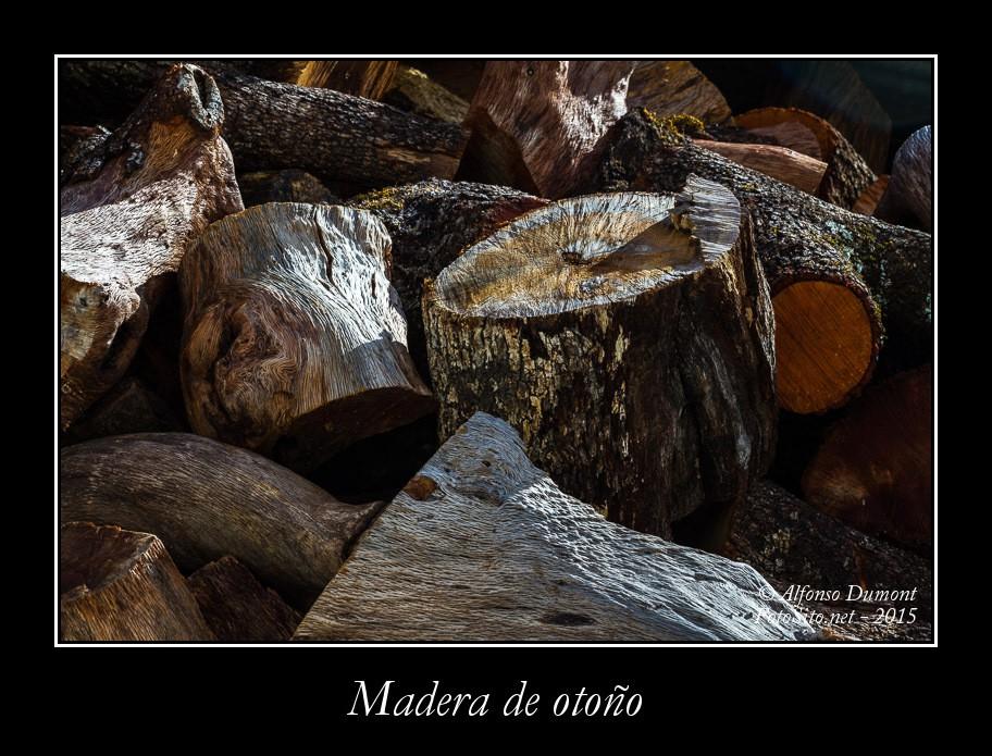 Madera de otono