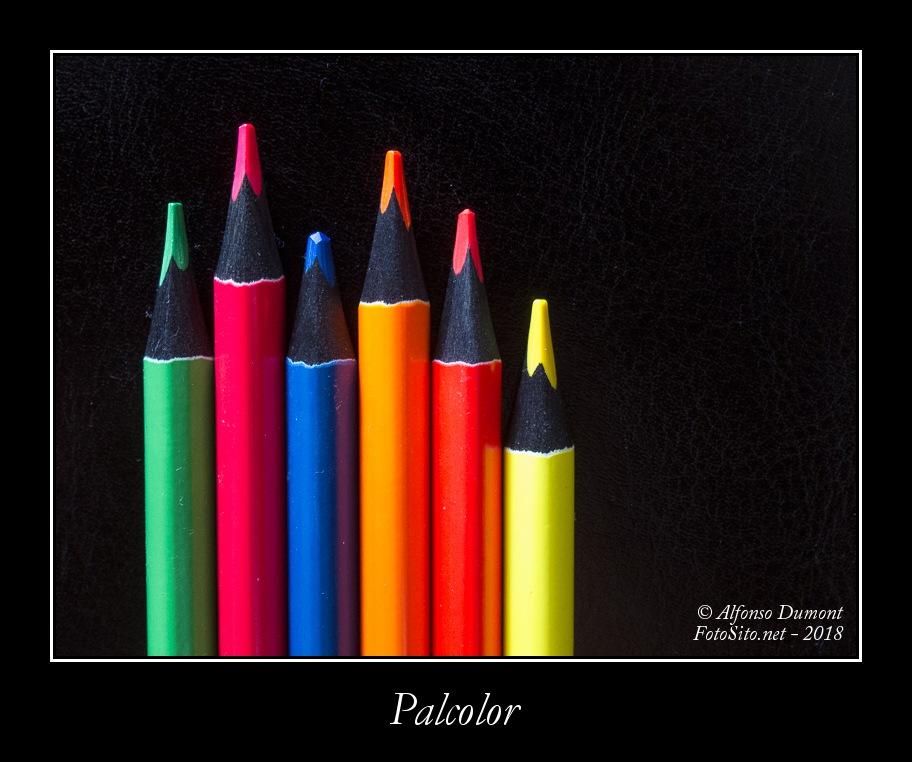 Palcolor