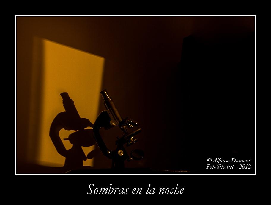 Sombras en la noche